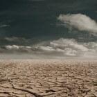 Het bioom: Grasland en woestijn - klimaat, ligging en bodem