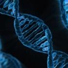 DNA als hulpmiddel bij het oplossen van misdrijven