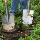 De tuin omspitten: nuttig of schadelijk?