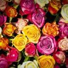 Eenvoudig creatief zijn met bloemen
