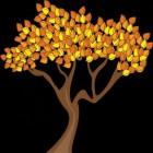 De verspreiding van zaden, pitten en noten