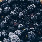 Bramen, meer dan een heerlijke vrucht