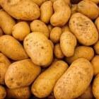 Alles over de aardappel