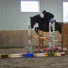 Tips voor het rijden van een springparcours, paardensport