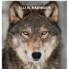 De wijsheid van wolven door Elli H. Radinger