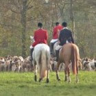 De slipjacht of fox hunting als attractie om te zien