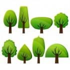 Bijzondere Bomen & Planten (Gewassen)