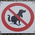 Hondentoiletten in Vlaamse steden en in de eigen tuin