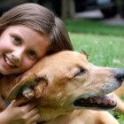 Van waar ontstaat de sterke hechting tussen mens en hond?
