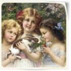 Herkomst, oorsprong en geschiedenis van het konijn