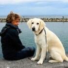 GPS tracker hond: raak je viervoeter nooit meer kwijt!