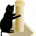 De krabpaal: een handig kattenmeubel voor de binnenkat