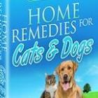 Boek - Natuurlijke behandelingen voor honden en katten