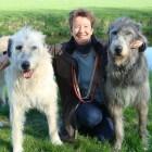 Een Ierse Wolfshond aanschaffen? Bezint eer gij begint!