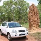 De termietenheuvels van Australië
