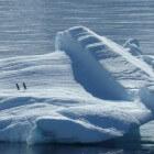 Zuidpoolgebied - smeltende ijskap en overbeviste wateren