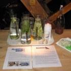 Drinkwater en plastic soup: wat is jouw watervoetafdruk?