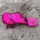 Ballonoplatingen: nadelige gevolgen voor dier en milieu