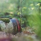 Plogging: combinatie van hardlopen en afval opruimen