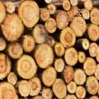 Duurzaam inkopen van hout in vijf stappen