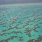 Great Barrier Reef – bedreigd werelderfgoed bij Queensland