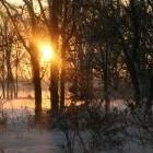 Sneeuw: zeven vragen, zeven antwoorden over sneeuw