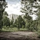 Tsjernobyl en haar natuur