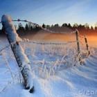 Hoe kom je de winter door? - tips en trucs