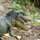 Was de Tyrannosaurus rex een jager of een aaseter?