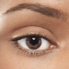 Onderdelen van het menselijke oog