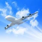 Emigreren en reizen met je huisdier per vliegtuig