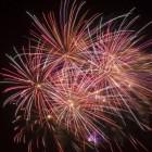 Vuurwerk: huisdieren en vuurwerk