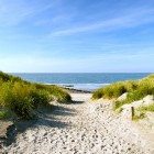 Natuurmonumenten, een goed doel voor de Nederlandse natuur
